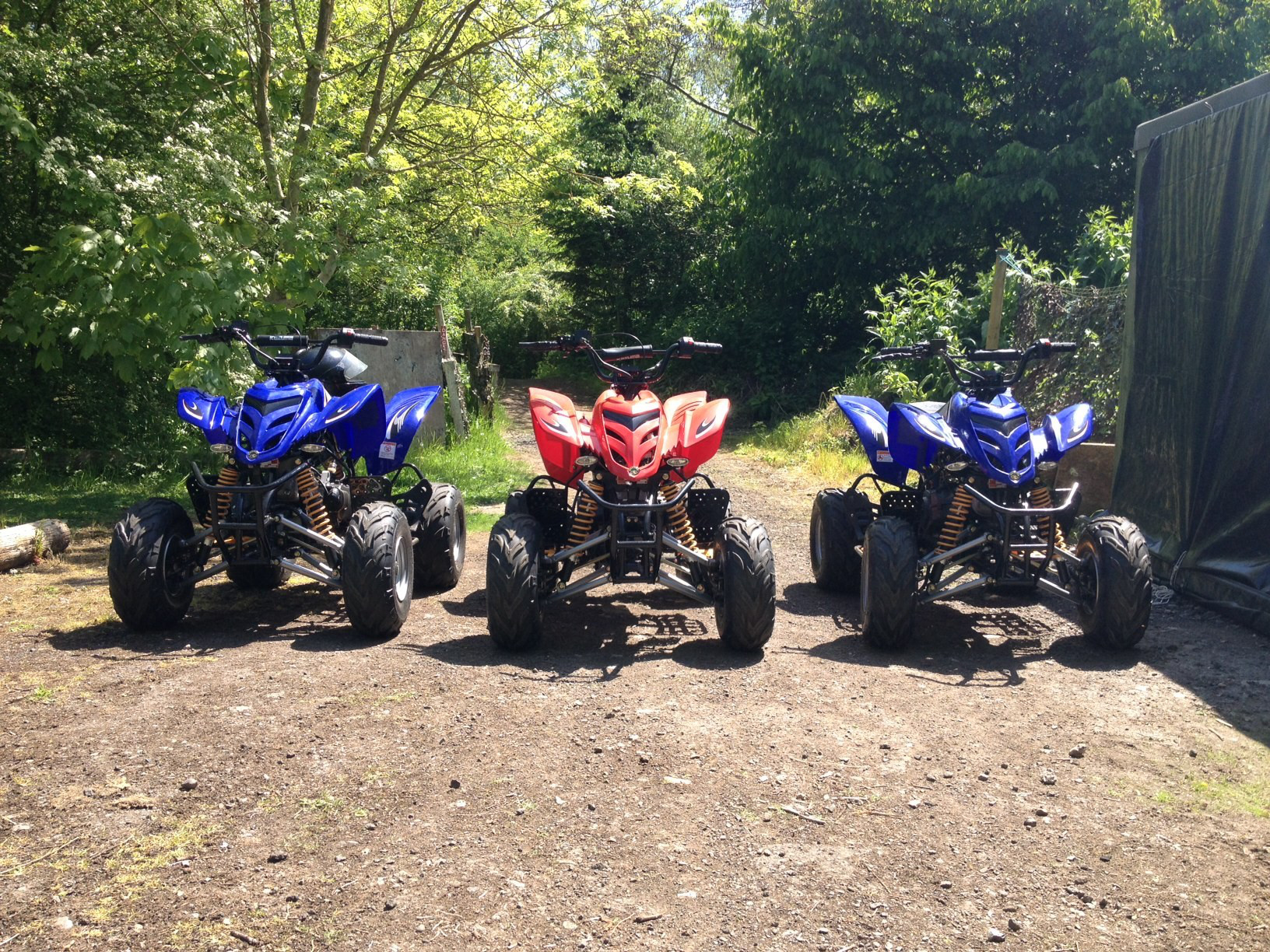 Quad Bikes Displayed